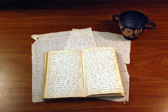 The Bradley diary